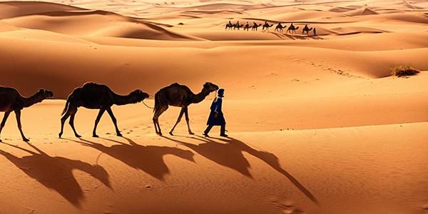 Allibert Trekking figure parmi les voyagistes qui reviennent en Mauritanie dès l'hiver 2017/2018 - Photo : Allibert Trekking