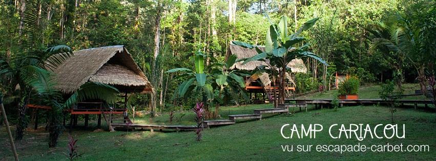 Escapade Carbet permet aux voyageurs en Guyane une symbiose avec la nature tout en respectant l'environnement.