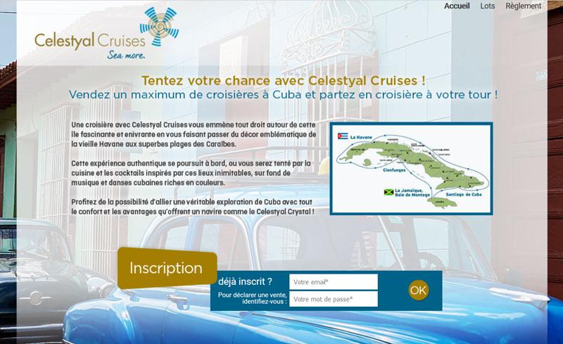 copie d'écran - site du challenge de vente