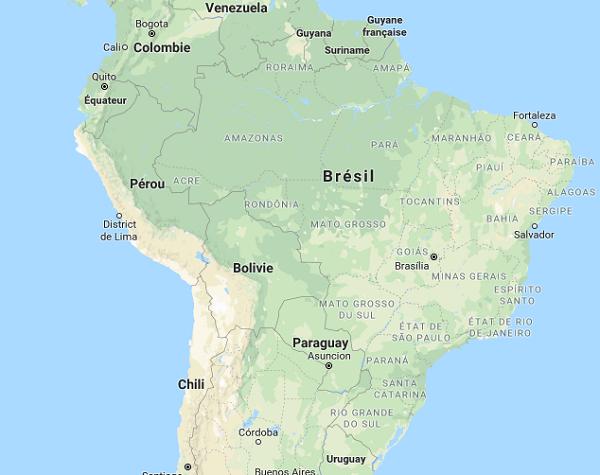 Plusieurs cas de fièvre jaune ont été rapportés, y compris parmi des touristes, dans le Minas Gerais, à Rio de Janeiro, à São Paulo et dans le District Fédéral (Brasilia) - Dr