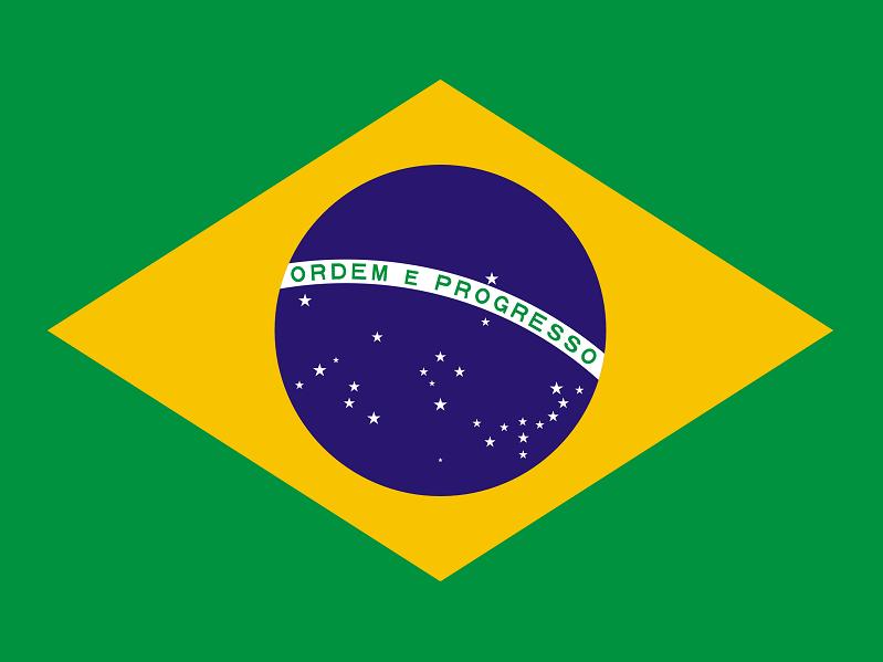 Brésil : des cas de fièvre jaune
