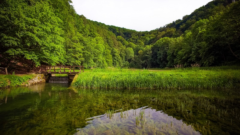 Parc naturel de Papuk- DR: Ivo Biočina/ ONT Croatie