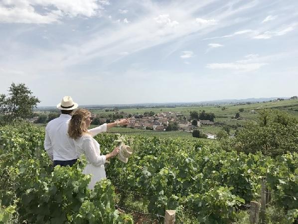 A la Française, le spécialiste de l'œnotourisme débarque en Bourgogne - Crédit photo : A la Française