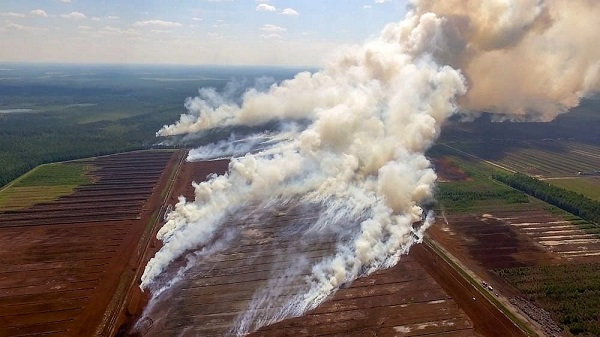 Incendies aussi en Lettonie - Crédit photo : compte Twitter @Lettonie_France