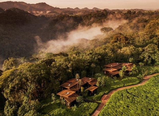 Le domaine One&Only Nyungwe House, et ses 23 chambres et suites, est implanté en bordure de la forêt tropicale Nyungwe, dans les paysages montagneux du sud du Rwanda - DR : One&Only