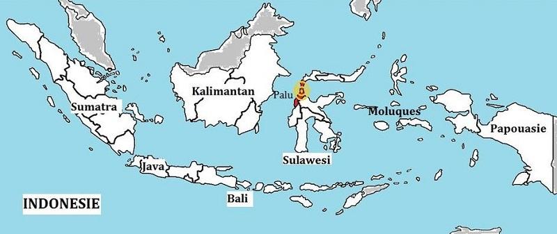 Séisme et tsunami en Indonésie : plus de 830 morts