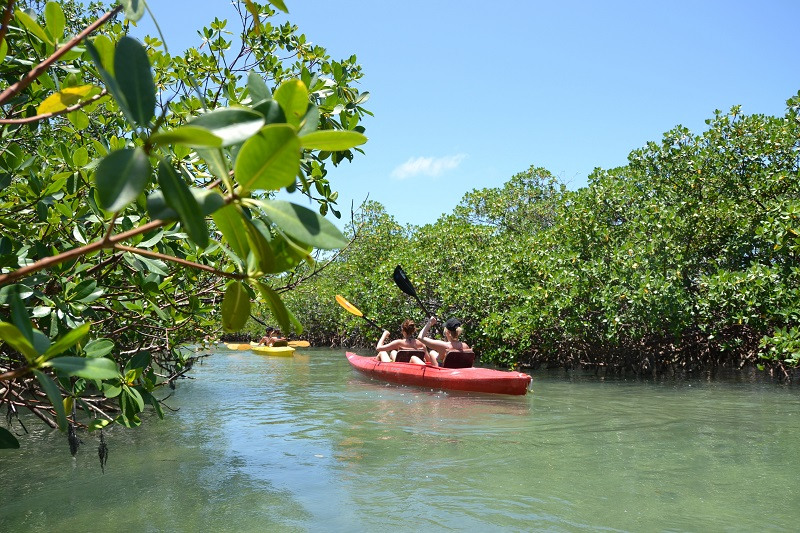 Lucayan National Park. Photo : The Islands of The Bahamas Ministry of Tourism