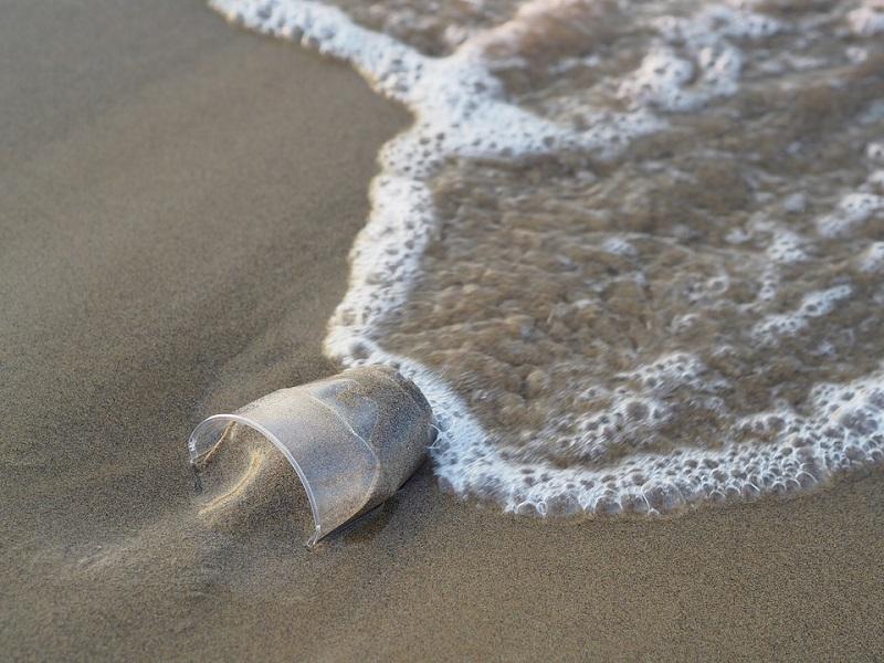 Le plastique non réutilisable sera banni des navires MSC Croisières - Photo : Pixabay