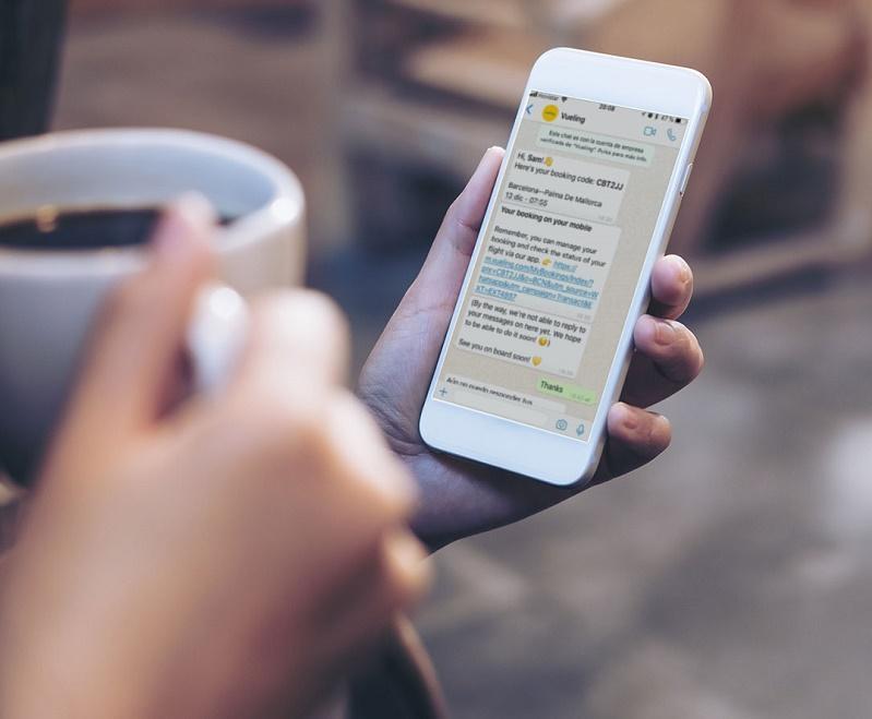 Le système peut envoyer au client une notification avec un lien direct via lequel il sera possible de sélectionner un siège, s'enregistrer en ligne ou même effectuer un changement de vol - DR : Vueling