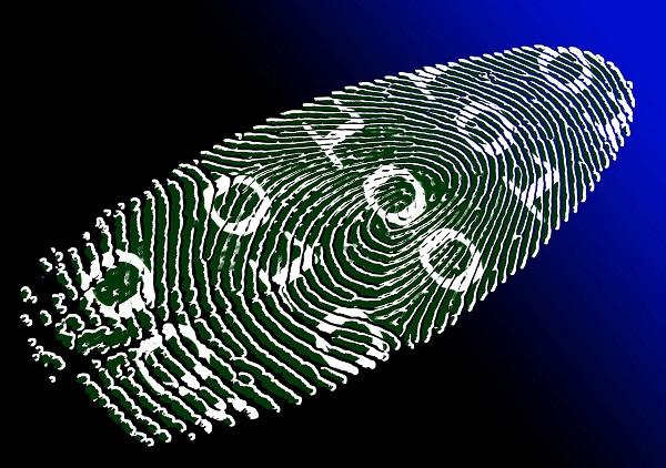 Alibaba, l'identité numérique parmi les 10 tendances technologiques clés pour 2019 - Crédit photo : Pixabay, libre pour usage commercial