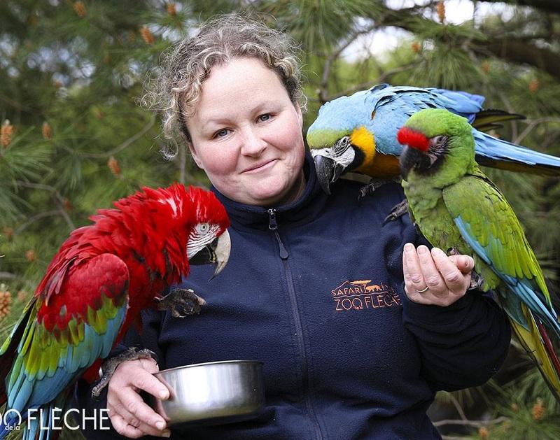 70 postes sont à pourvoir au Zoo de la Flèche pour la saison 2019 - DR : Zoo de la Flèche