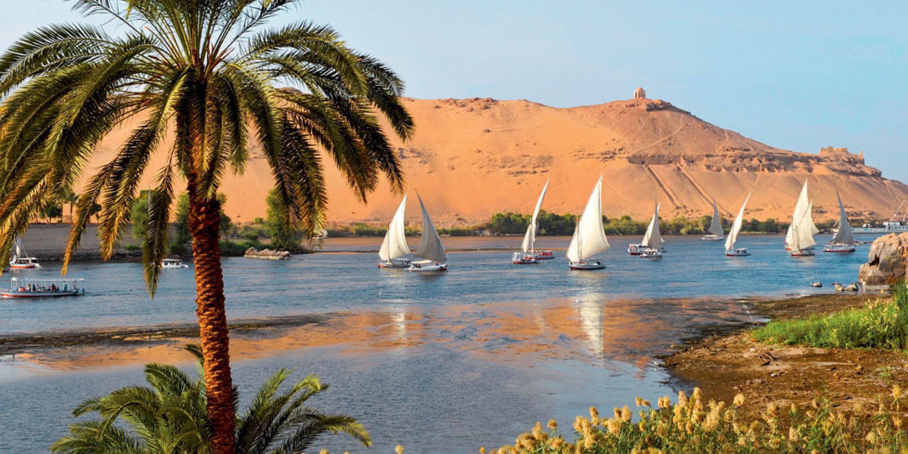 Top of travel programme l'Egypte et propose une croisière sur le Nil - DR