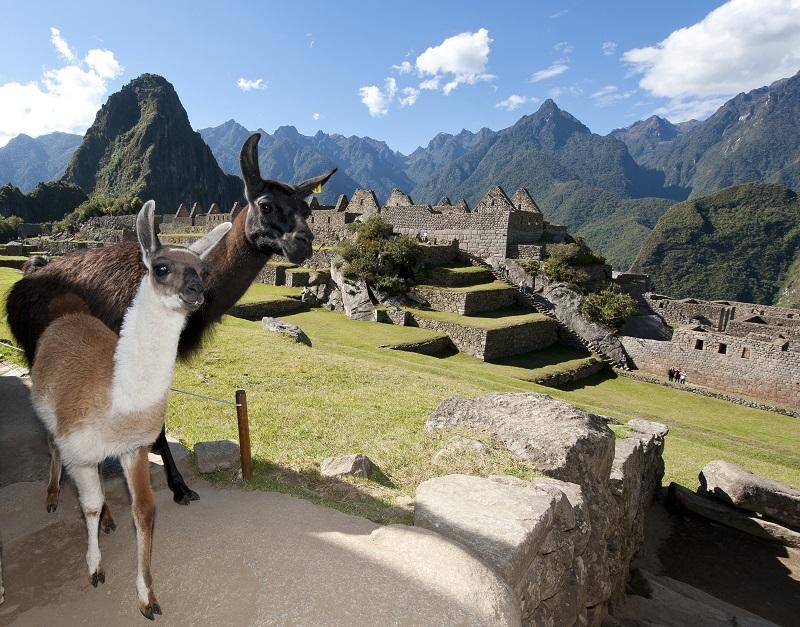 L'OT du Pérou présentera les nouvelles modalités d'accès au Sanctuaire Historique du Machu Picchu - DR Pérou