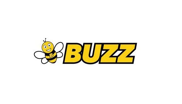 """Ryanair Sun : la compagnie charter change de nom et devient """"Buzz"""""""