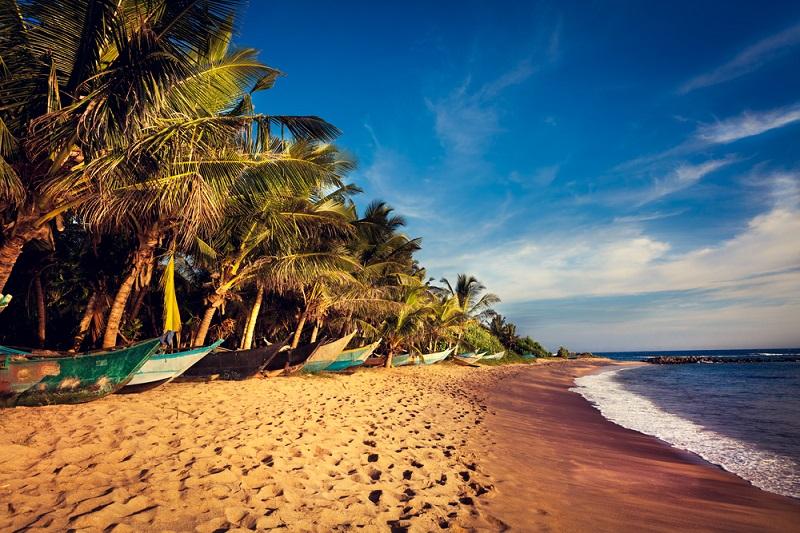 Les attentats de Pâques devraient entrainer une baisse de la fréquentation touristique au Sri Lanka de l'ordre de 30% . - Depositphotos