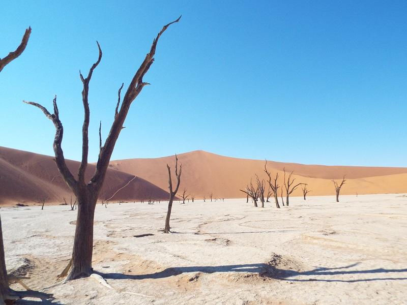 Nouveauté 2019, l'agence de voyage en-ligne Echappée australe propose de découvrir Sossusvlei en Namibie. – DR Echappée australe