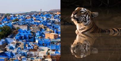 Voyamar présente une nouvelle production en Inde - Crédit photo : Voyamar