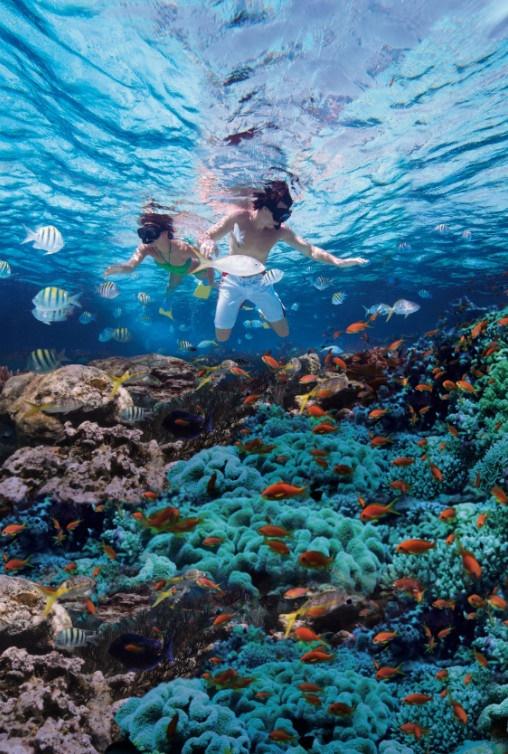 La République Dominicaine : le tourisme en hausse de 4,6% au 1er trimestre
