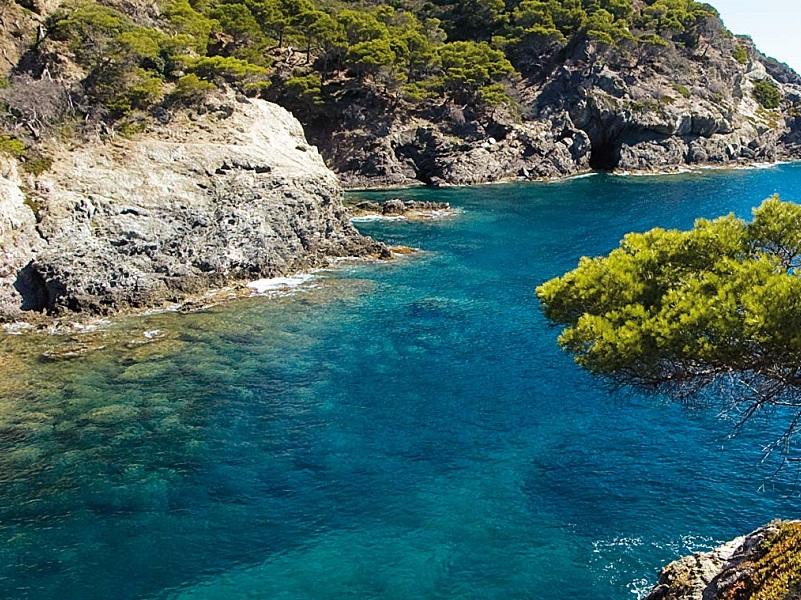 Les îles d'Or au large de Hyères (Var) sont un vaste parc naturel – crédit photo les bateliers de la côte d'azur