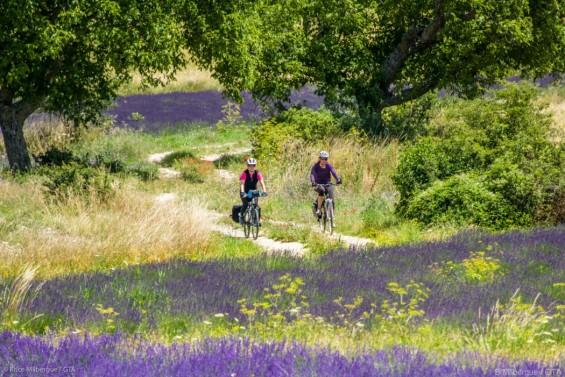 La Provence terre bénie du vélo à assistance électrique - GTA