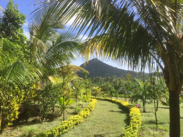Entre forêt indigène, vallées luxuriantes, cascades, rivières et panoramas renversants, l'île compte quatre inscriptions au patrimoine mondial de l'Unesco - DR : J.-P.C.