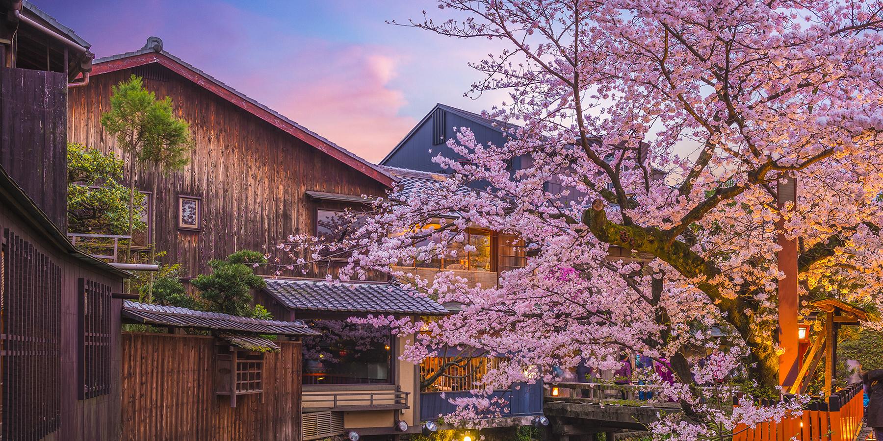 Very Good Trip 6 organisée par Visiteurs au Japon - DR