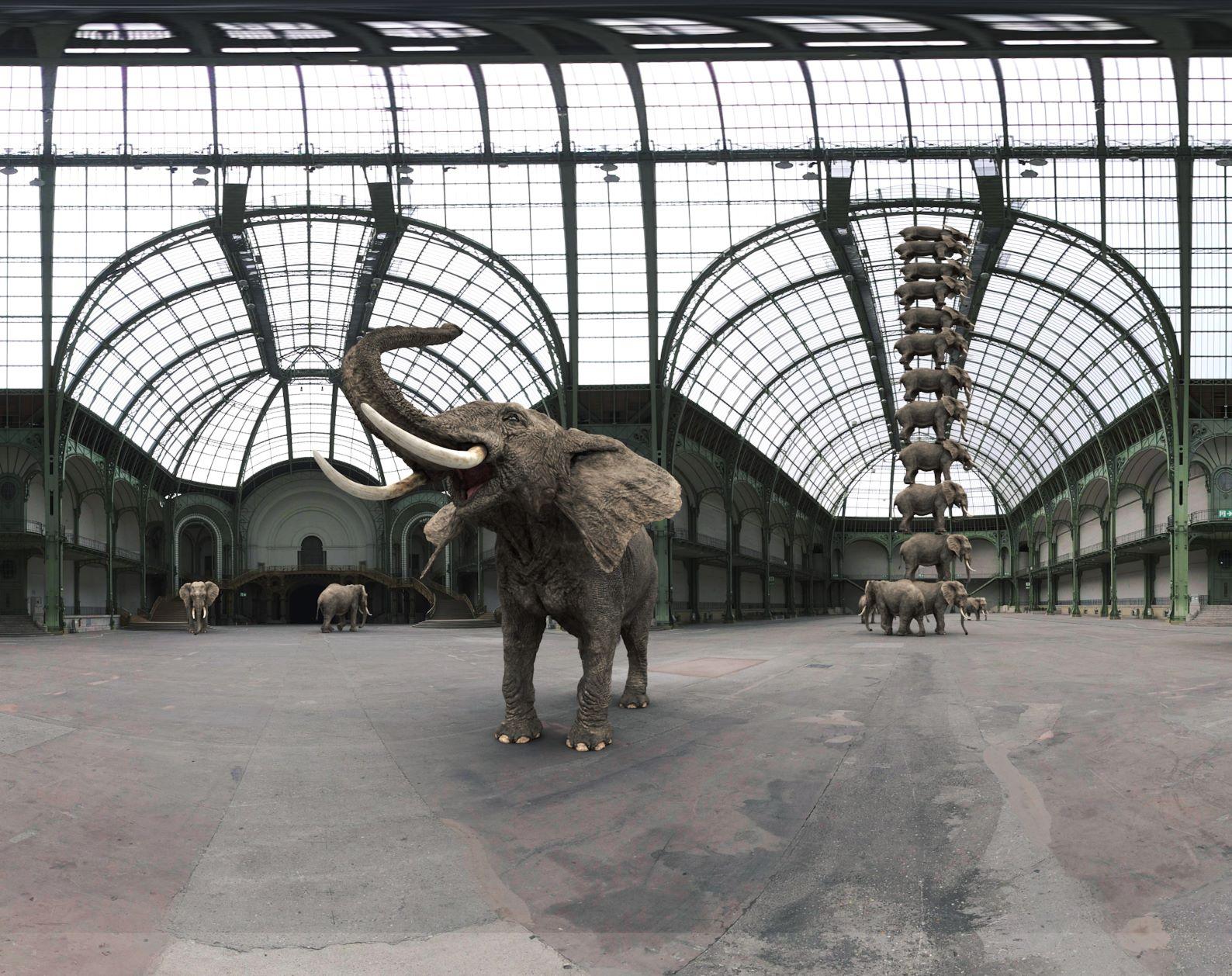 Le Grand Palais et sa fameuse verrière, la plus grande d'Europe. Elle accueille 12 éléphants superposés - Photo FlyView