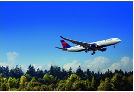 Delta veut être la 1ère compagnie a atteindre la neutralité carbone - Crédit photo : Delta