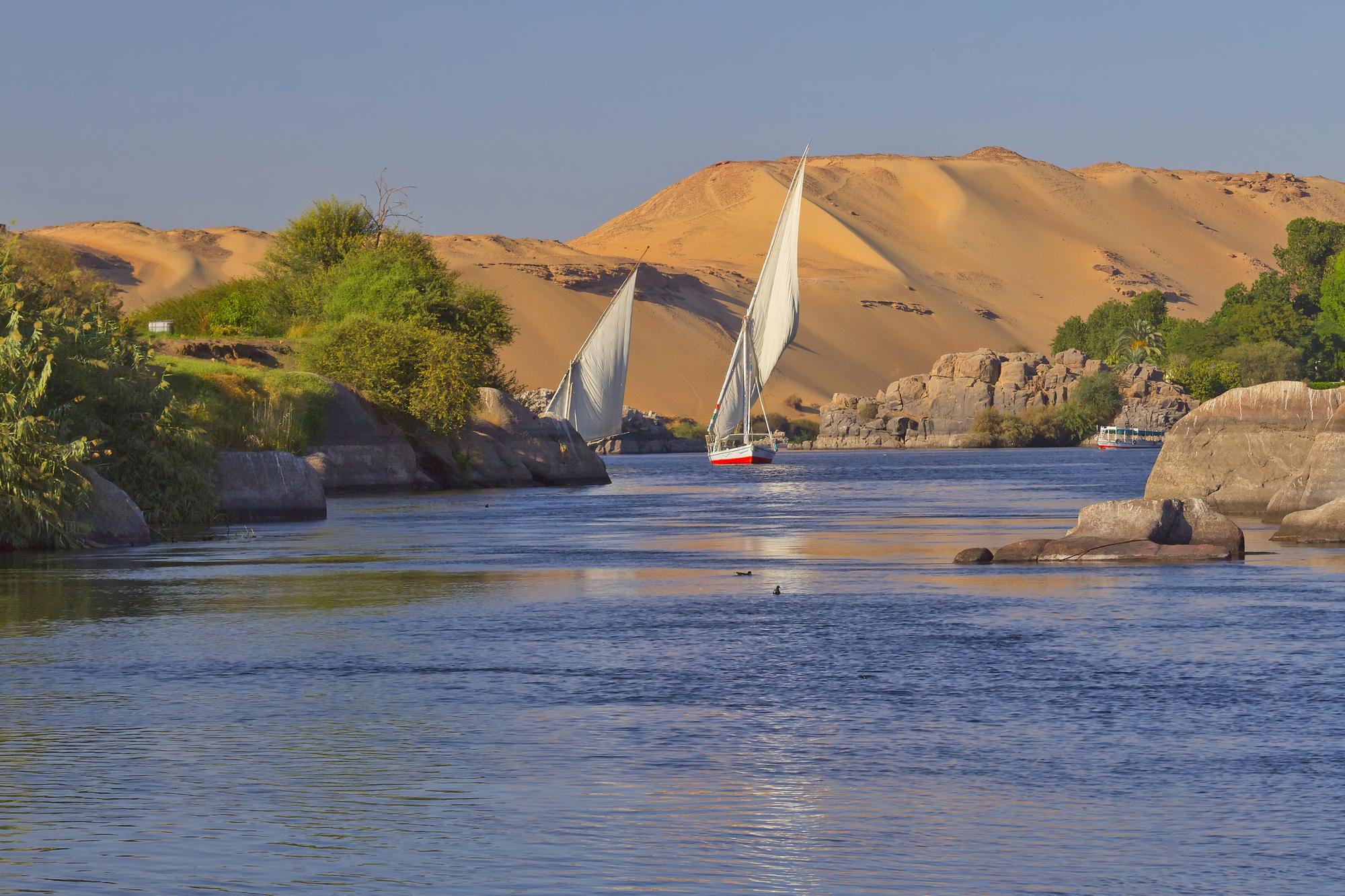 Peu à peu, le coronavirus s'installe aussi sur les rives du Nil /crédit DepositPhoto