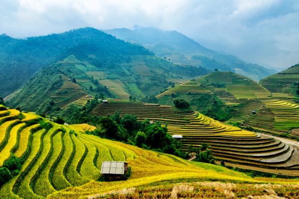 Le SETO a décidé de suspendre les départs vers le Vietnam dès le 12 mars et au-delà, jusqu'à ce que la situation permette un retour des voyageurs - DR : DepositPhotos