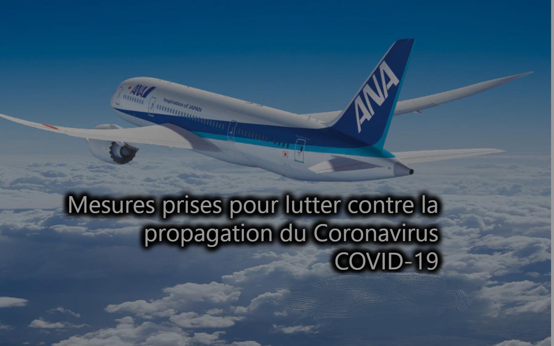 ANA supprime momentanément les dessertes des lignes de Tokyo vers Paris, Francfort (NH223/224), Munich, Düsseldorf, Bruxelles et Vienne entre le 29 mars et le 24 avril 2020. - capture écran ANA