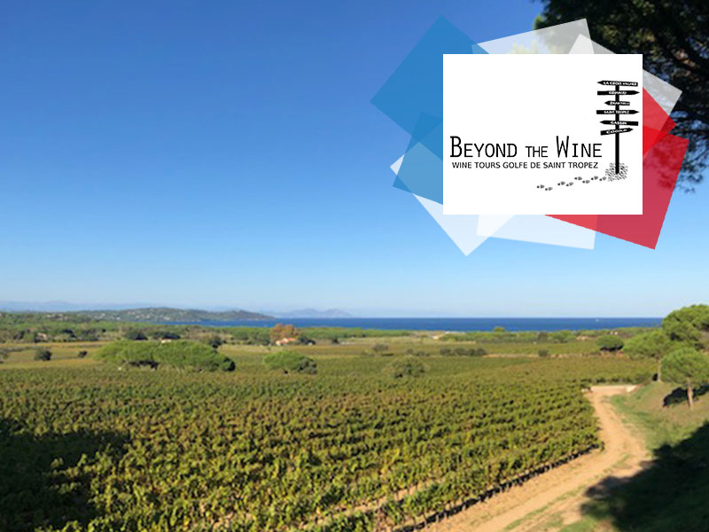 Copyright @ Beyond The Wine –Domaine des Tournels, Ramatuelle