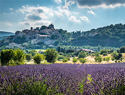 Image utilisée sous licence de Shutterstock.com