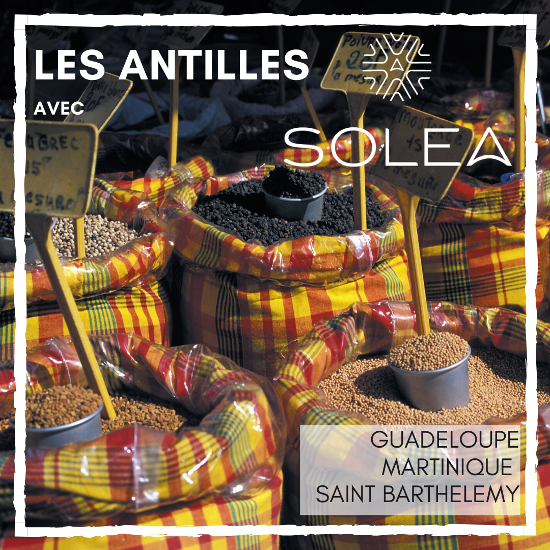 Solea lance les Antilles dès cet été !