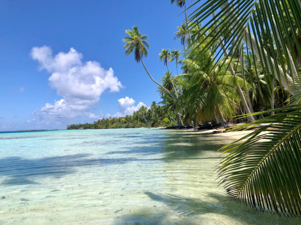 La cote de Tahiti et ses îles ne faiblit pas /crédit photo JDL