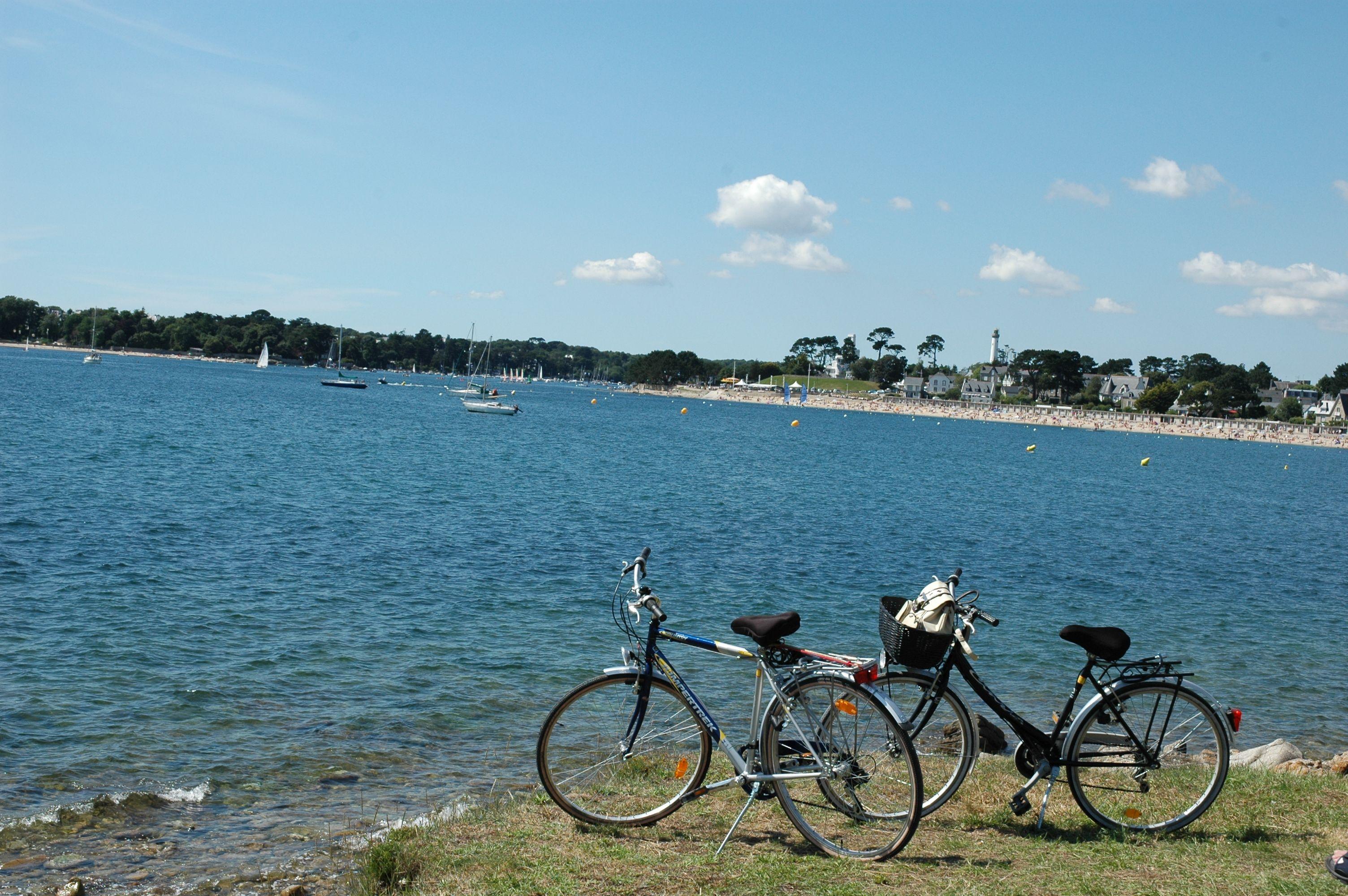 Idéalement situé, le domaine offre la possibilité de parcourir les bords de Loire à Vélo