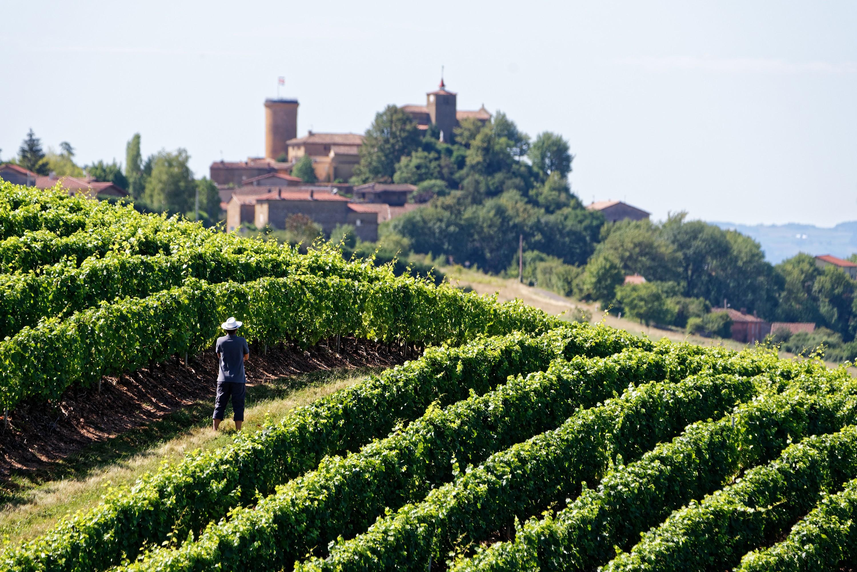 Village de Beaujolais - DR : P.Muradia, CRT Auvergne Rhône Alpes