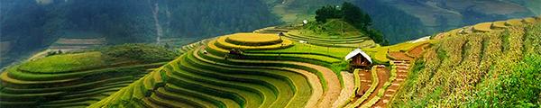 Shanti Travel, Réceptif Vietnam