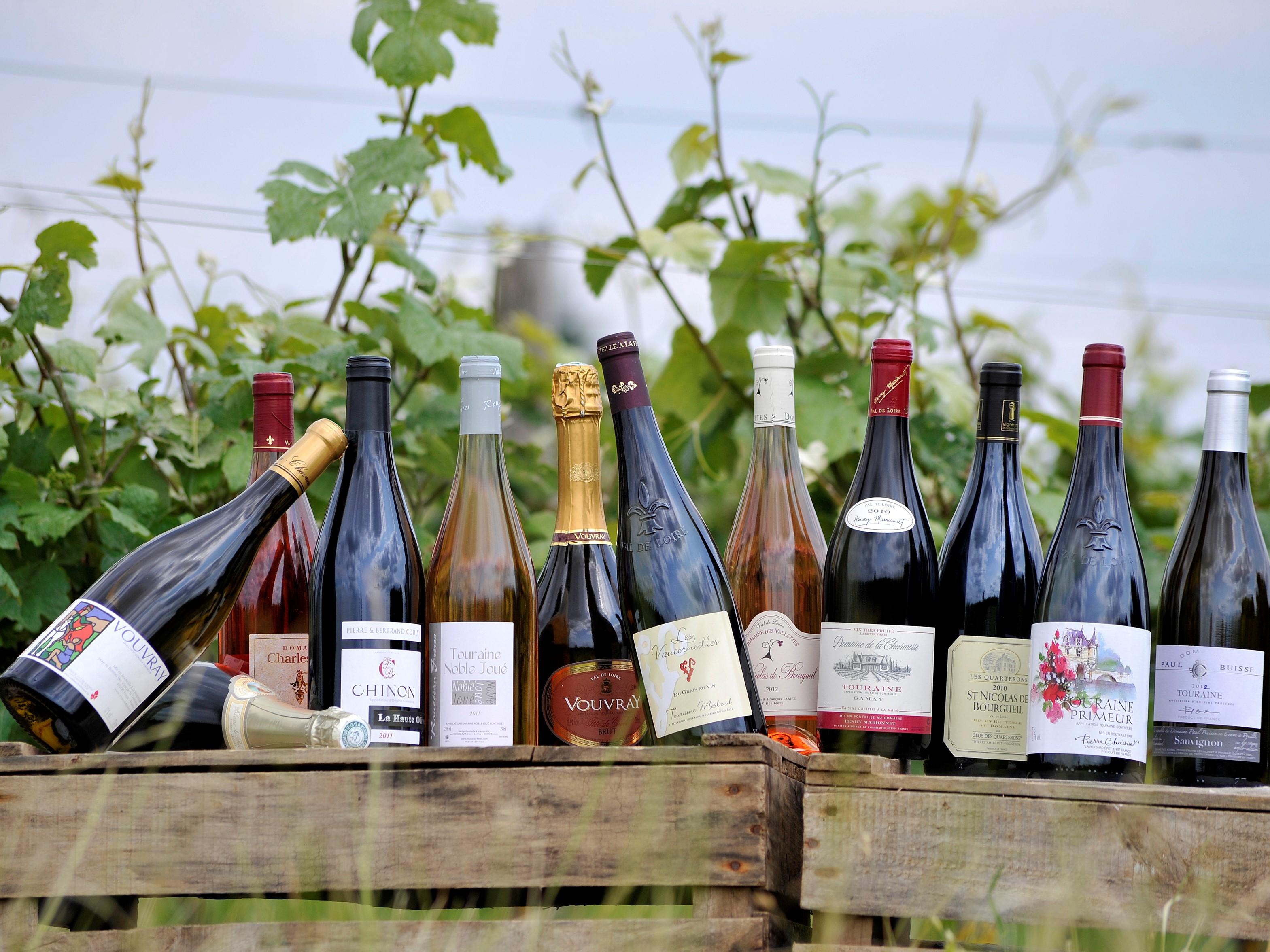 Vin de Touraine - DR : Martrou Thierry, CRT Centre-Val de Loire
