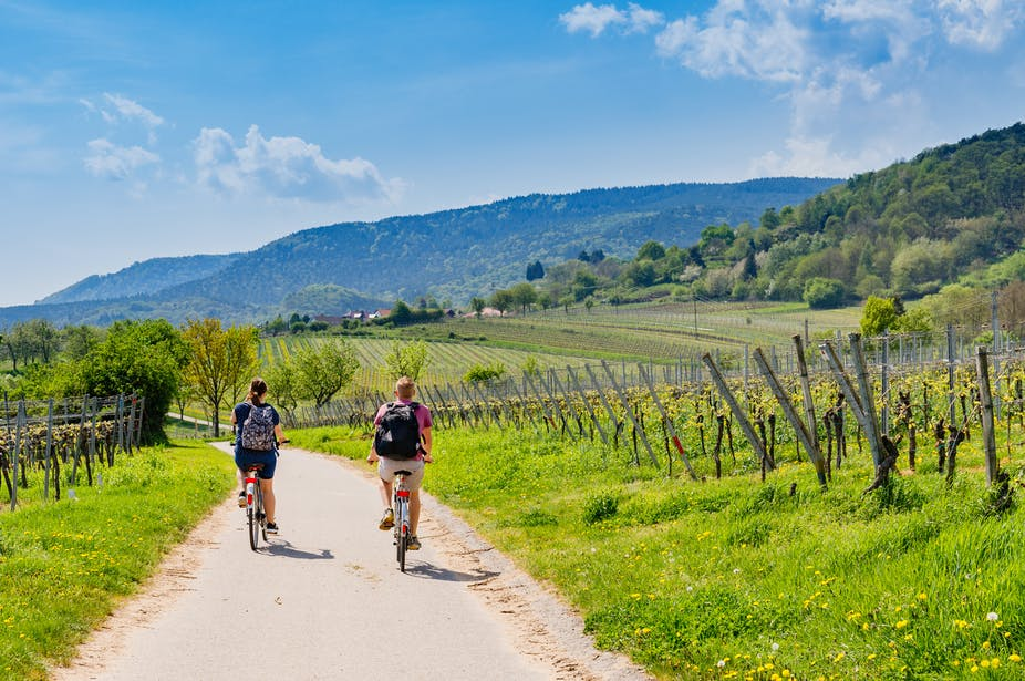 Pas besoin de partir bien loin pour s'émerveiller. La France regorge de régions viticoles à explorer. nnattalli / Shutterstock