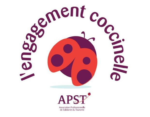 Va-t-on vers une crise de gouvernance à l'APST ? - DR : Logo APST