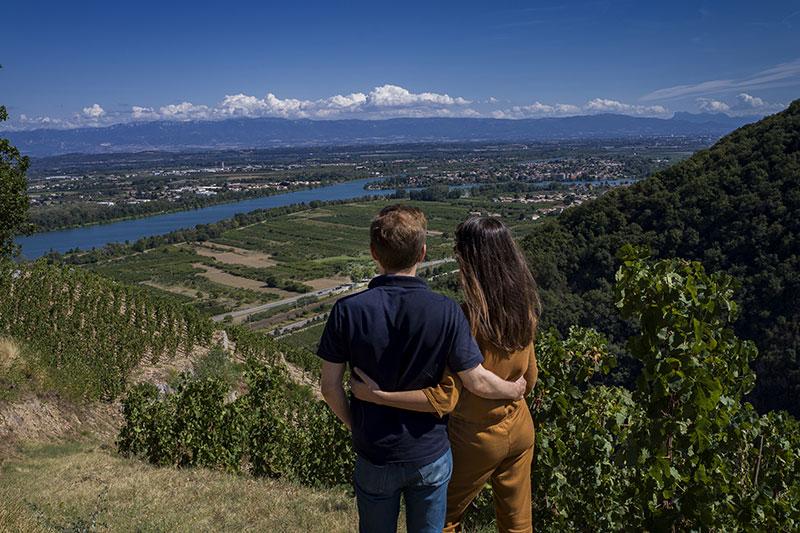 Vignobles des Côtes du Rhône, autour de Tournon et Tain l'Hermitage © A. Stenger/ Auvergne-Rhône-Alpes Tourisme