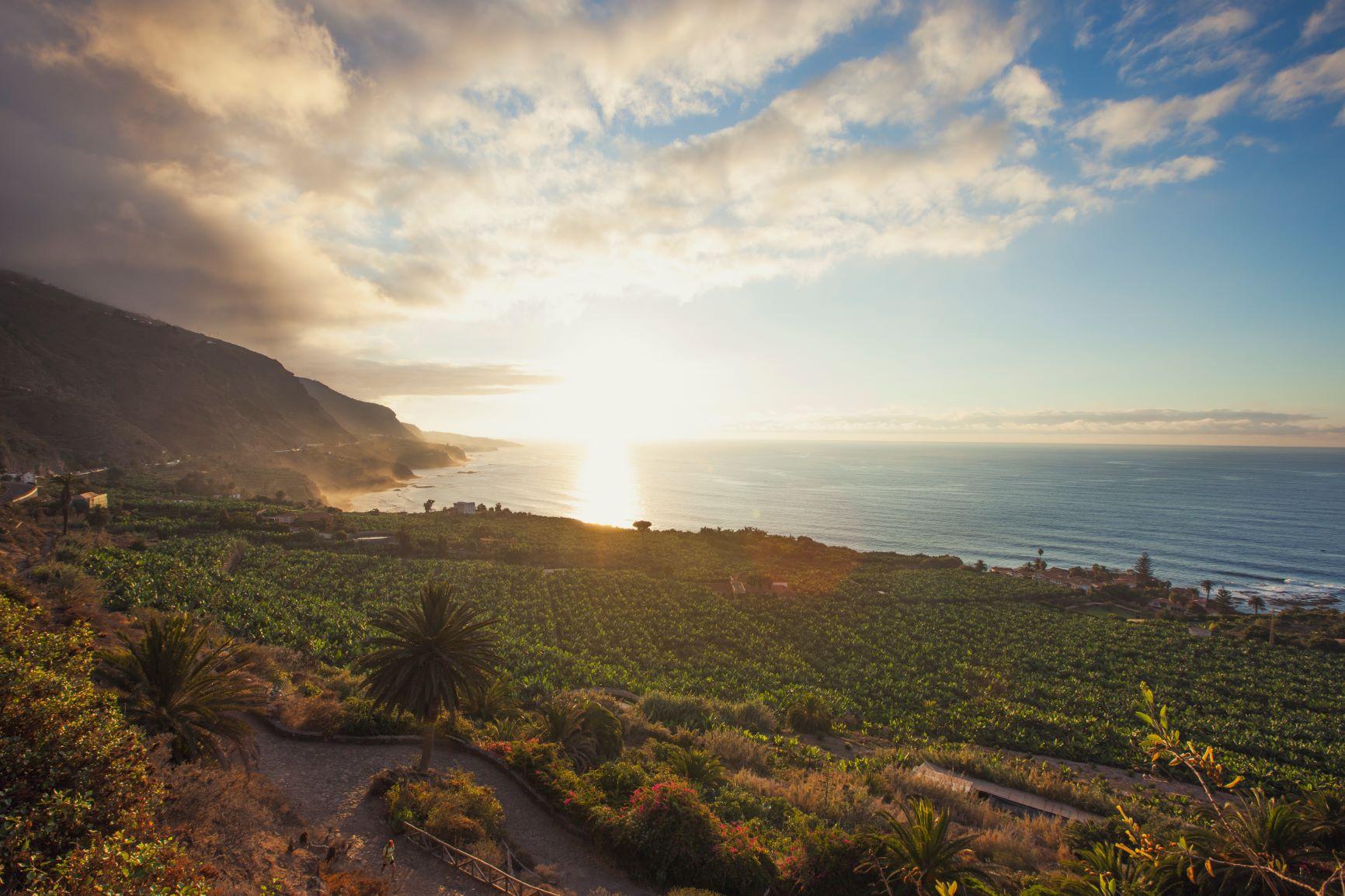 Plage Rambla de Castro à Tenerife- DR Office de tourisme de Tenerife