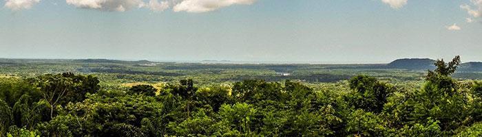 © Guyane Evasion / Vue panoramique route de Kaw