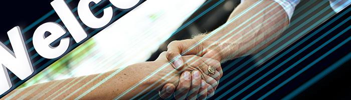 Un partenaire professionnel / © Pixabay