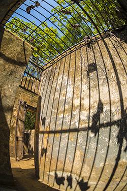 Vestige cellule île Saint-Joseph
