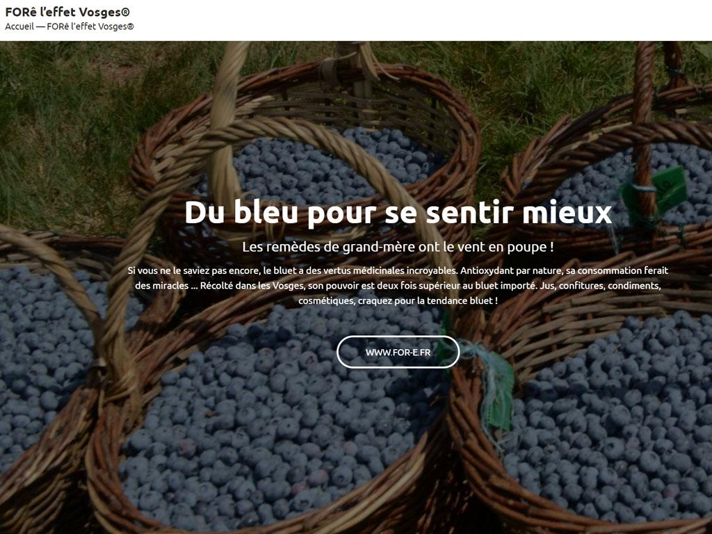 Initiative du département des Vosges qui dès 2012, a créé la marque Forê l'Effet Vosges® dans l'objectif d'accroître la notoriété de la destination Vosges. - DR