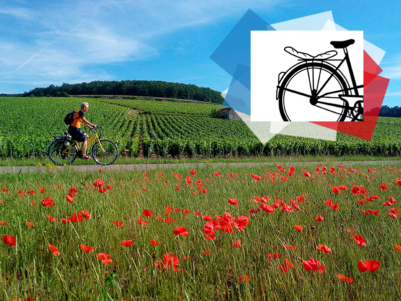 © Escapade Gourmande / Chablis & Coquelicots à vélo