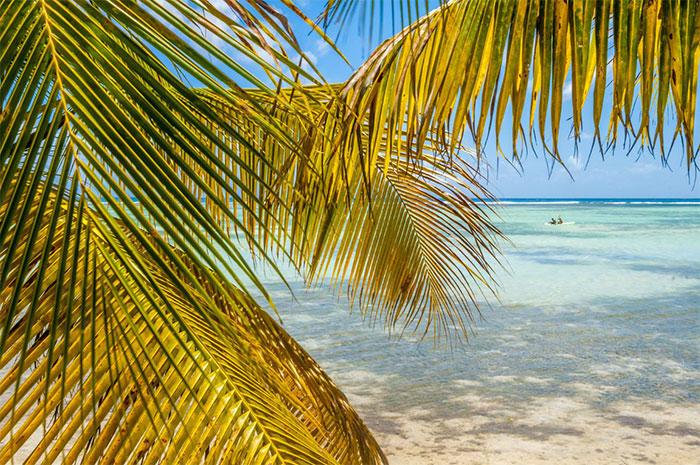 © Comité du Tourisme des Îles de Guadeloupe