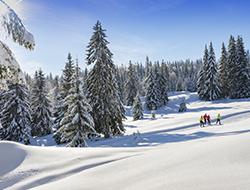 © S.Buisson / ski de fond